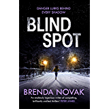 Blind Spot (Evelyn Talbot Book 4) (English Edition)