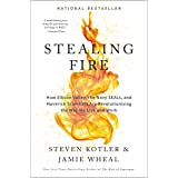 Stealing Fire: How Silicon Valley, the Navy SEALs, and Maverick Scientists Are Revolutionizing the Way We Live and Work (Engl