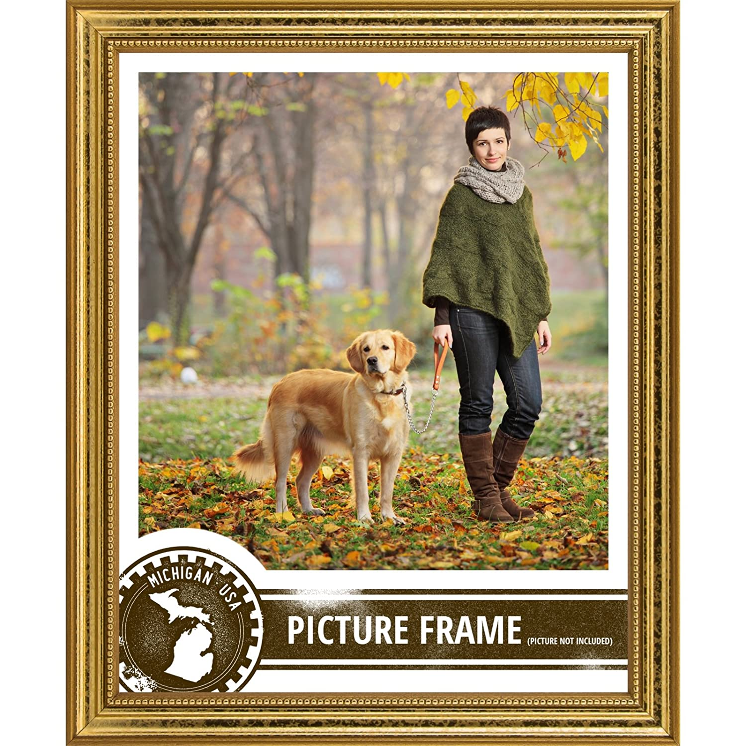 amazoncom craig frames 314gd2436dac 075 inch wide pictureposter frame in ornate finish 24 by 36 inch ornate gold single frames