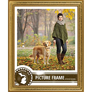 craig frames 314gd2436dac 075 inch wide pictureposter frame in ornate finish 24