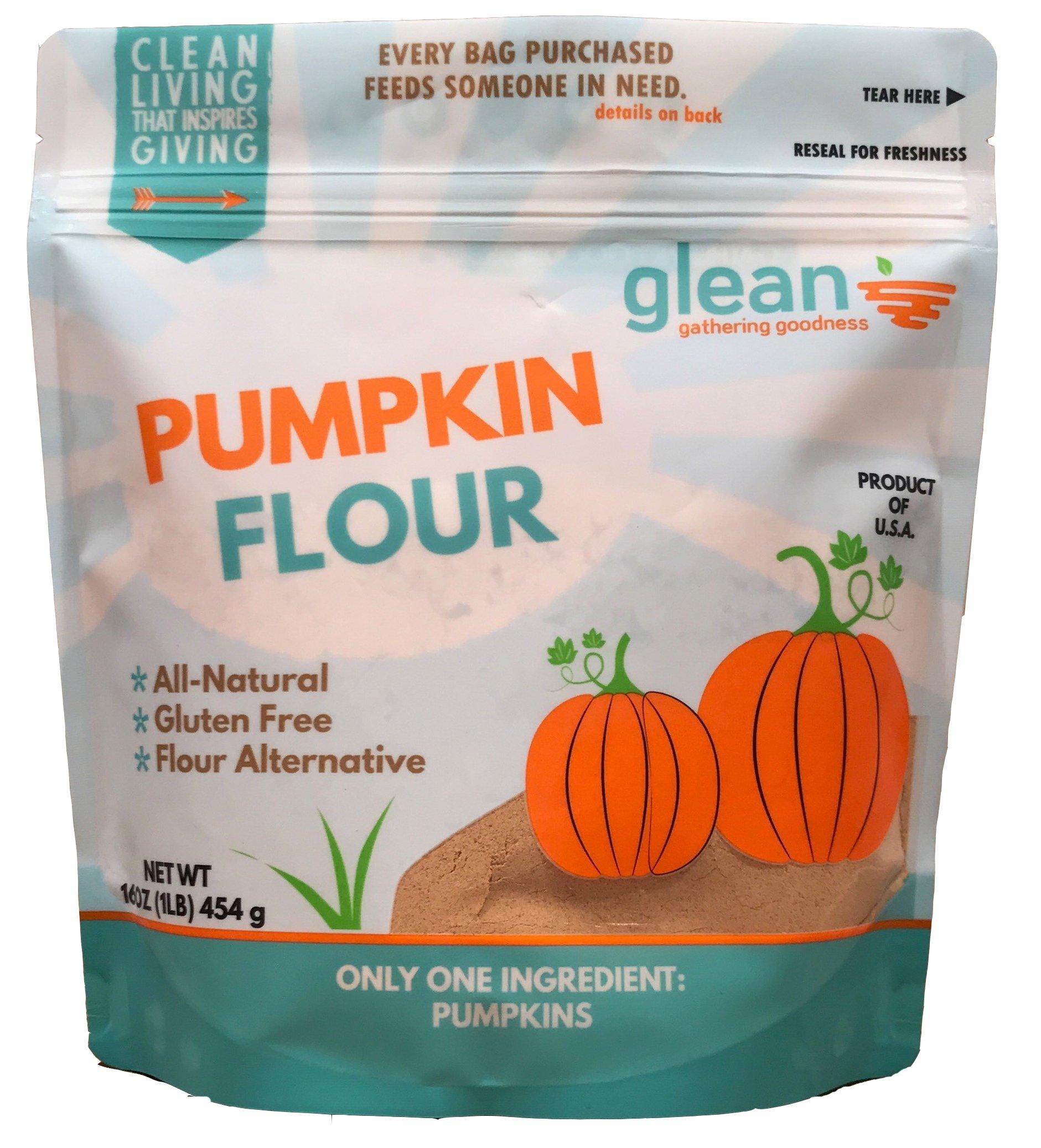 Glean Pumpkin Flour, 16oz. - Gluten Free/Paleo by Glean, LLC