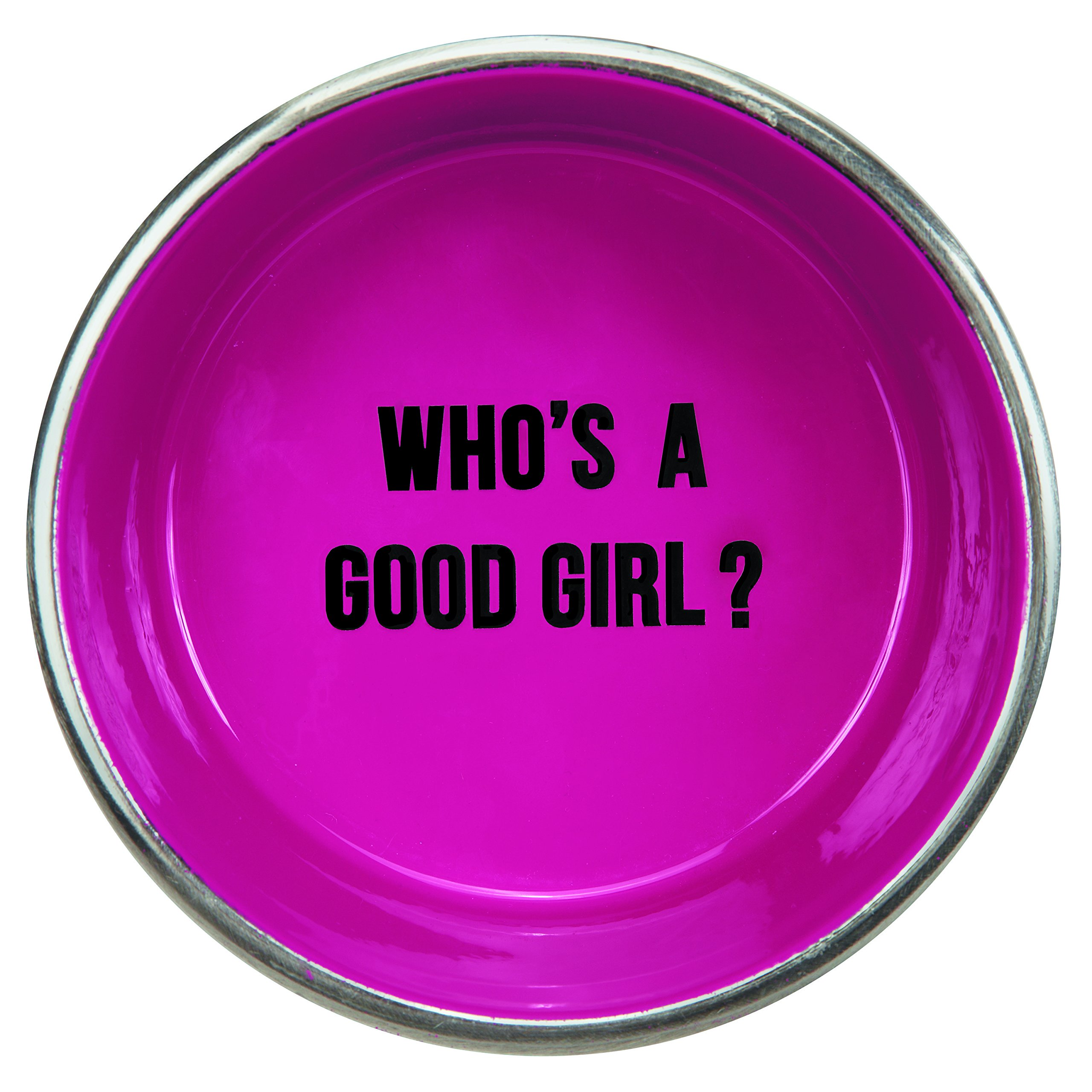 Proselect Chitchat Stainless Steel Dog Bowl, Pink, 64 oz