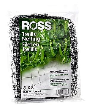 Ross enrejado red (apoyo para escalada, frutas, verduras y flores): Amazon.es: Jardín