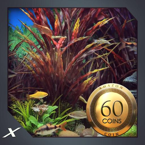 Funky Fish Aquarium : view the colourful aquarium on screen (Tropical Decorations For Aquarium)