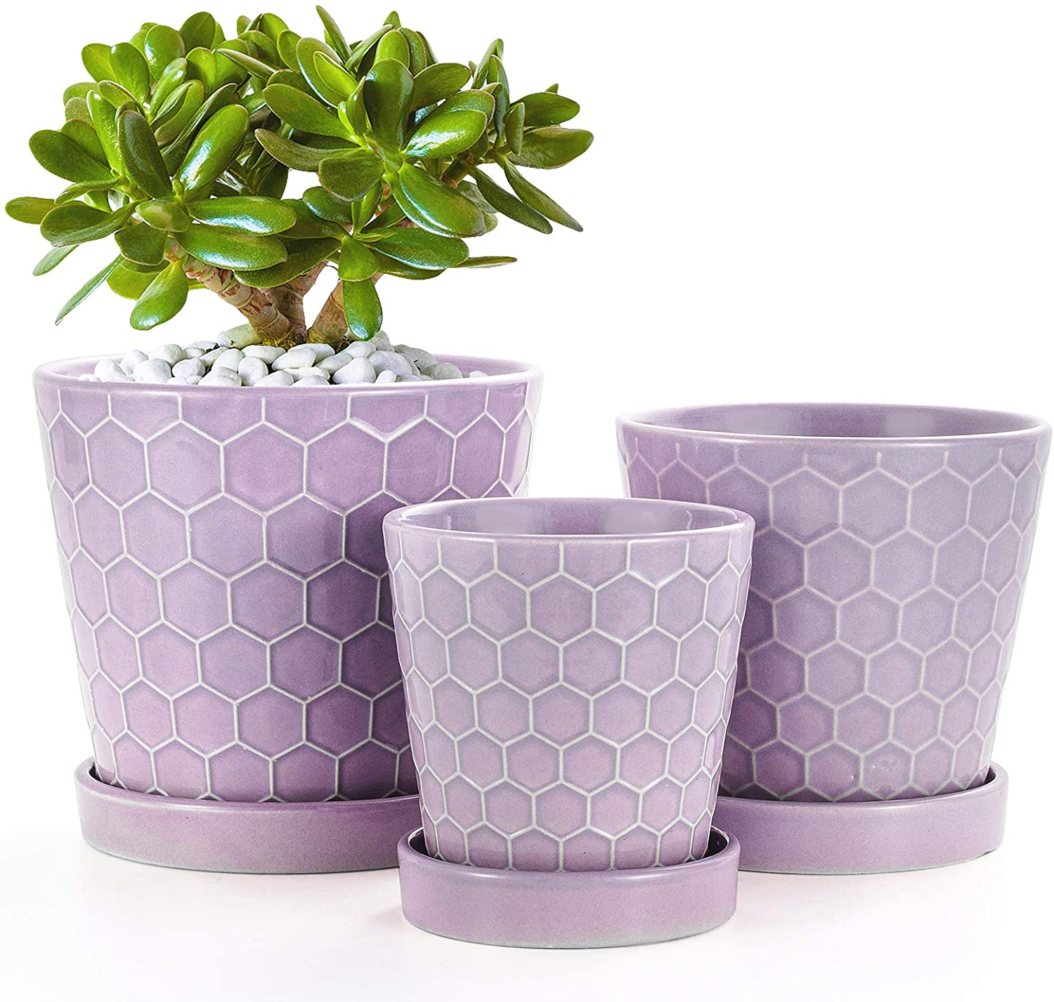 """BUYMAX Succulent Planter –4""""+5""""+6"""" Ceramic Flower Pot with Drainage Hole and Ceramic Tray - Gardening Home Desktop Office Windowsill Decoration Gift Set 3 - Plants NOT Included (Purple)"""