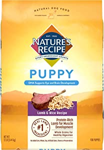 Nature's Recipe Puppy Dry Dog Food, Lamb & Rice Recipe