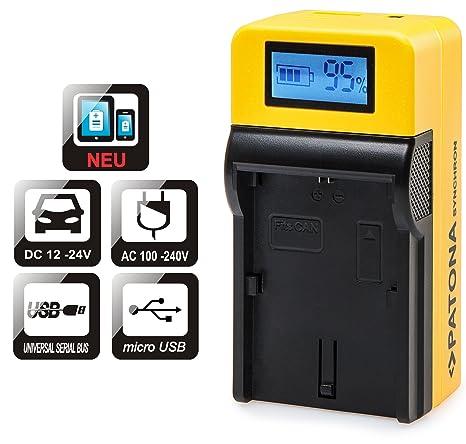 Patona LCD Top Cargador para Batería Sony NP-FW50 con ...