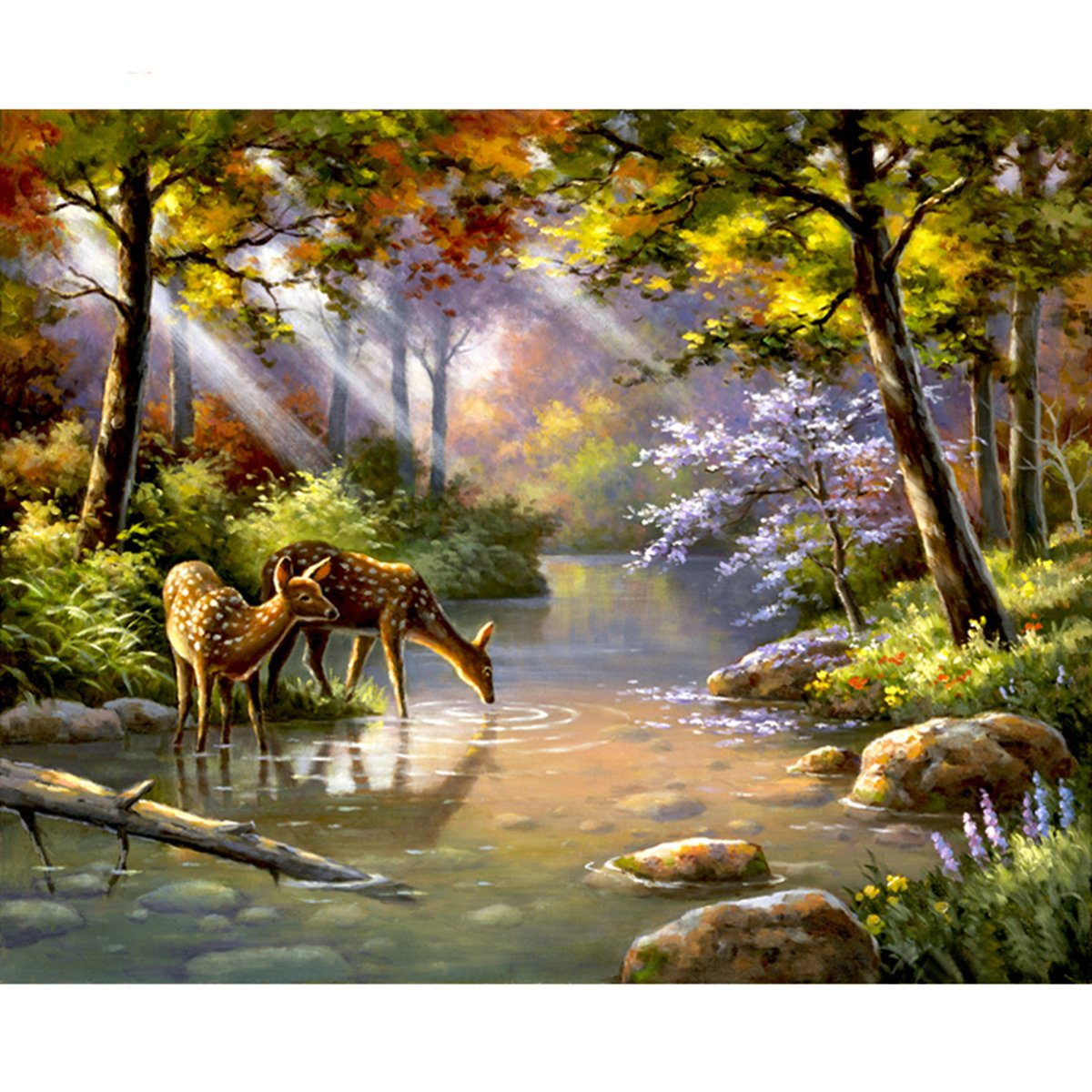 Shukqueen Diy Oil Painting, Adult's Paint by Number Kits, Acrylic Painting Wild Deer 16X20 Inch (Framed Canvas)