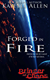 Bringer of Chaos: Forged in Fire (Marooned on a Barren World) (English Edition)