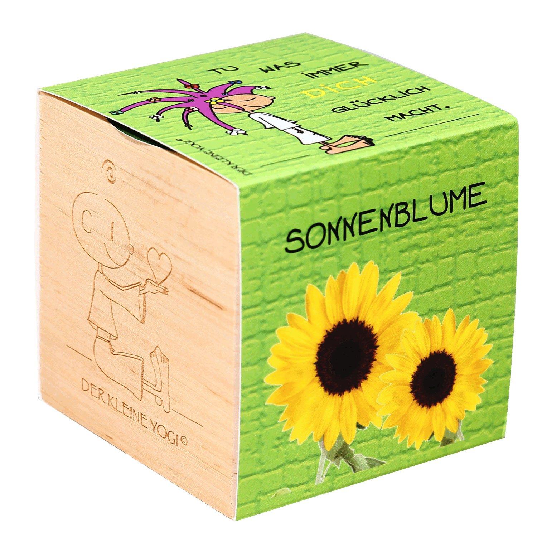 Der kleine Yogi Pflanzen im Holzwürfel - GLÜCKLICH - Sonnenblume Feel Green