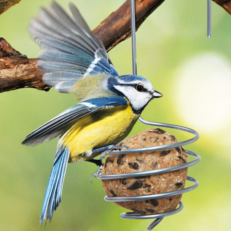 Mangeoires à oiseaux