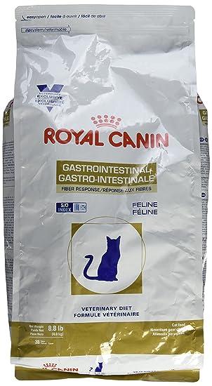 Royal Canin Veterinary Diet Gastrointestinal Fibra Respuesta Seca Gato Alimento 8,8 Lb: Amazon.es: Productos para mascotas