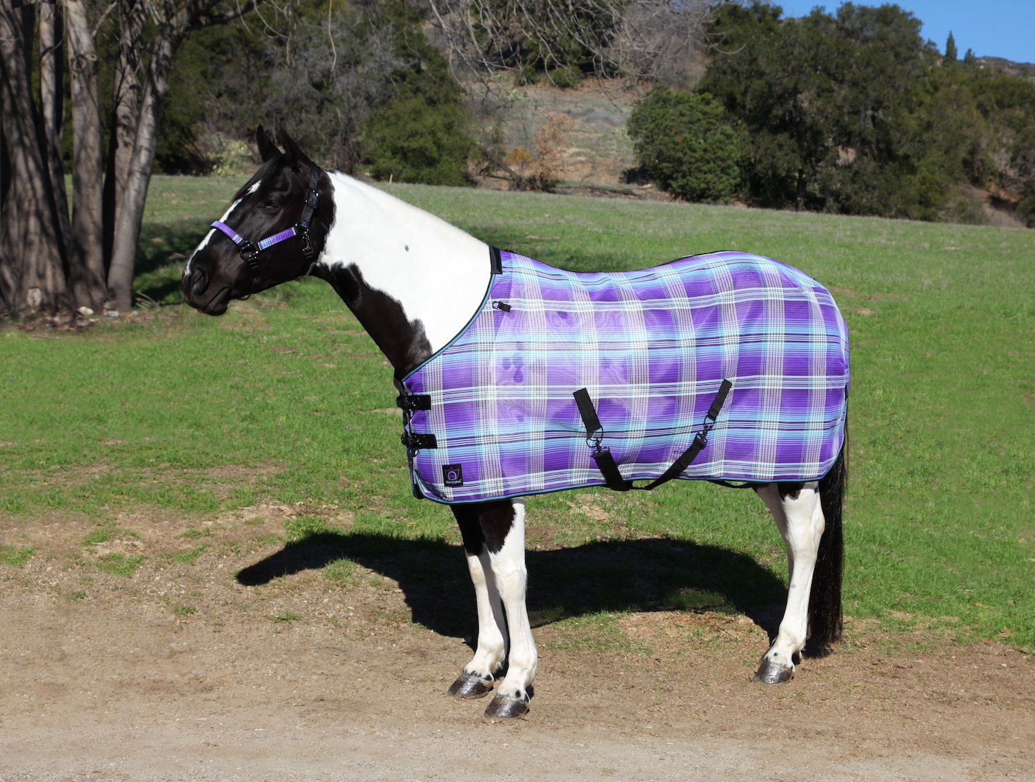 Kensington Signature Draft Protective Fly Sheet — SureFit Cut with Snap Front Chest Closure — Made of Grooming Mesh This Sheet Offers Maximum Protection Year Round, Size 96, Lavender Mint Plaid
