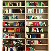 Oedim Display Fondo Librería para Videollamadas | Medidas