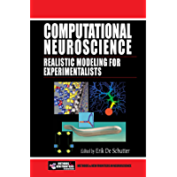 Computational Neuroscience: Realistic Modeling for Experimentalists (Frontiers in Neuroscience) (English Edition)