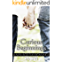 Curious Beginnings: A M/M Age Play Romance