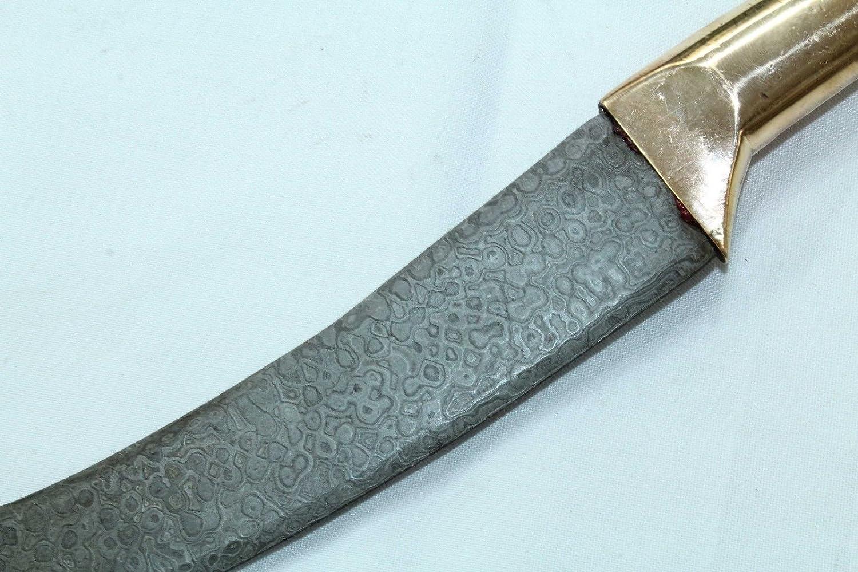 Amazon.com: Cuchillo de Dagger de PH artístico Damasco hoja ...