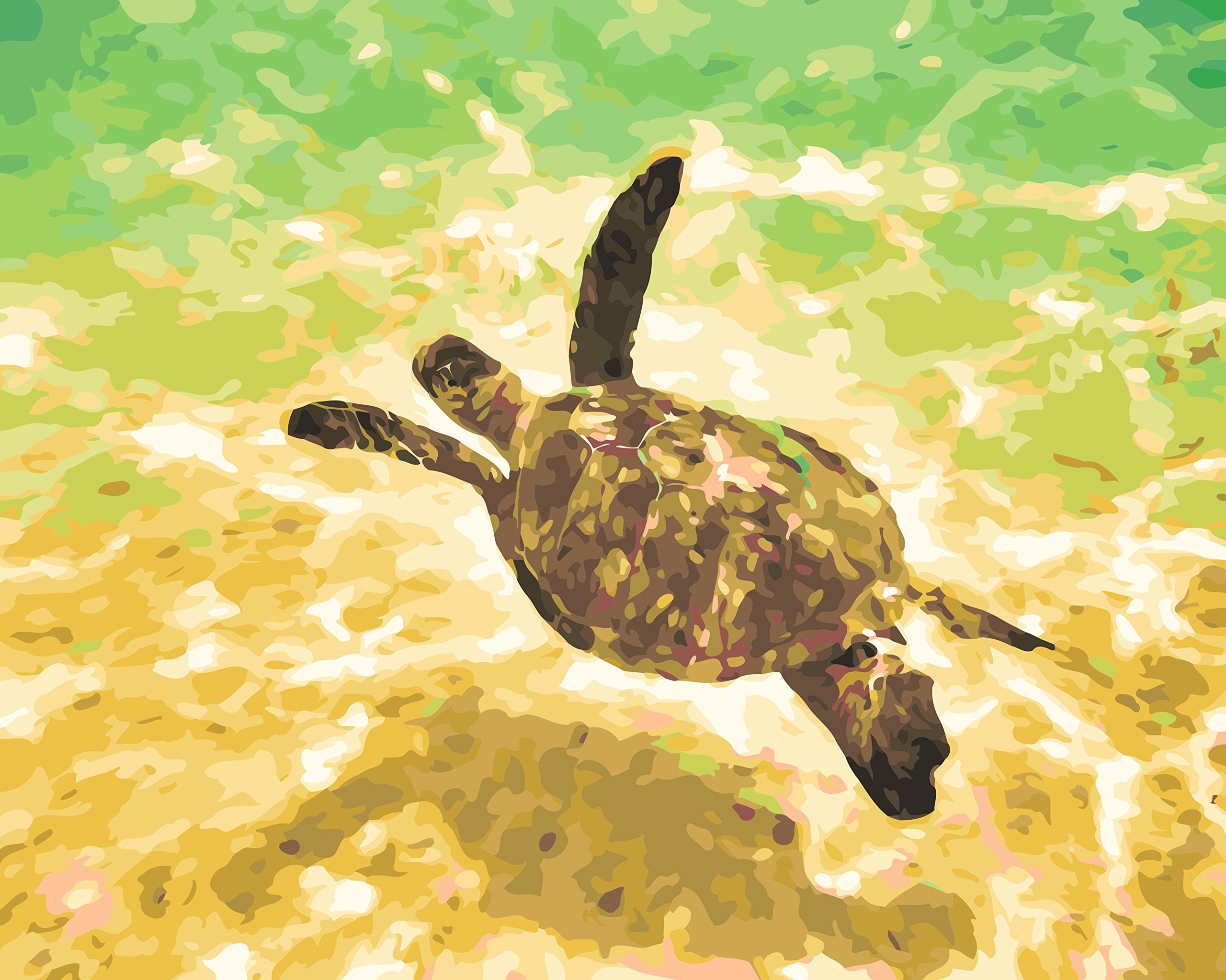 Kauai Sea Turtle Paint by Numbers for Adults DIY Acrylic Painting Kit by MaileKai Creates, 16x20 inches, Wooden Framed Linen Canvas, 4 Professional Brushes