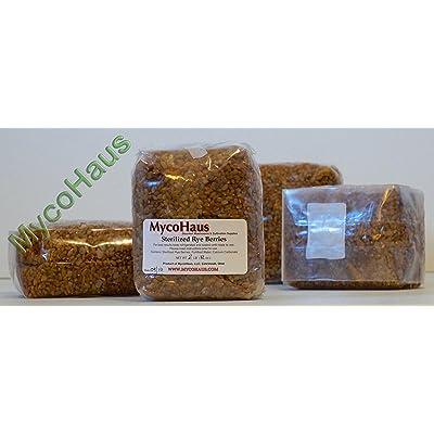12 lbs ( 6 pack ) sterilized rye grain berries : Garden & Outdoor