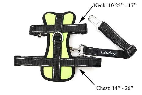 Glubey - Cinturón de Asiento para Perro con arnés sin tirones ...