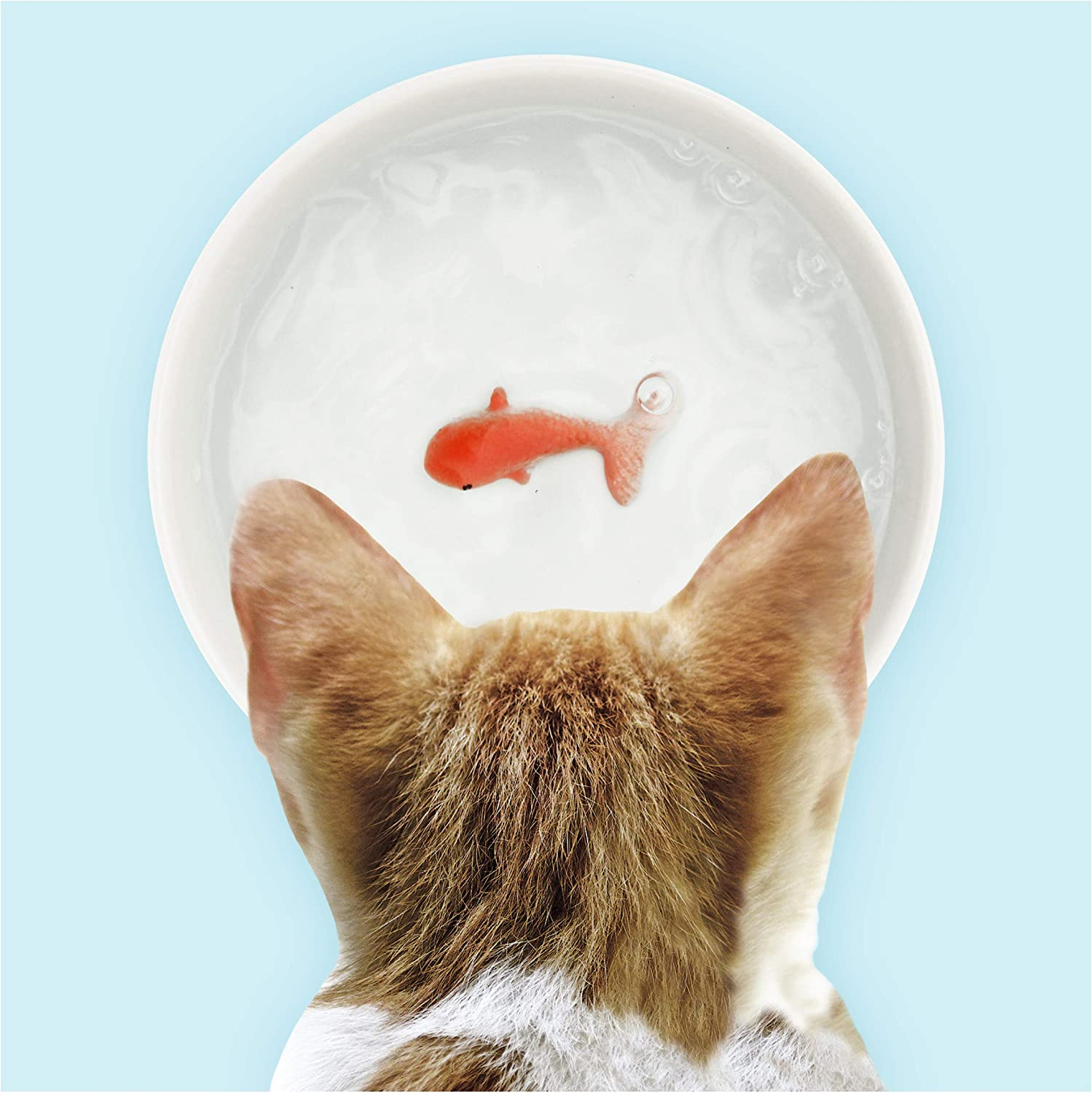 Suck UK Goldfish Dog Or Cat Bowl | Novelty Food & Water Bowl | Cat Food & Dog Food Dish | Ceramic Bowl | Cat Accessories |