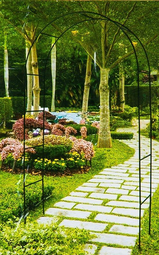 Arco Rose enrejado enrejado Rank Pergola Entrada arco para rosas nuevo: Amazon.es: Jardín