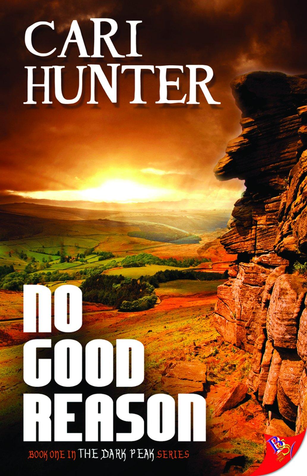 No Good Reason Cari Hunter product image