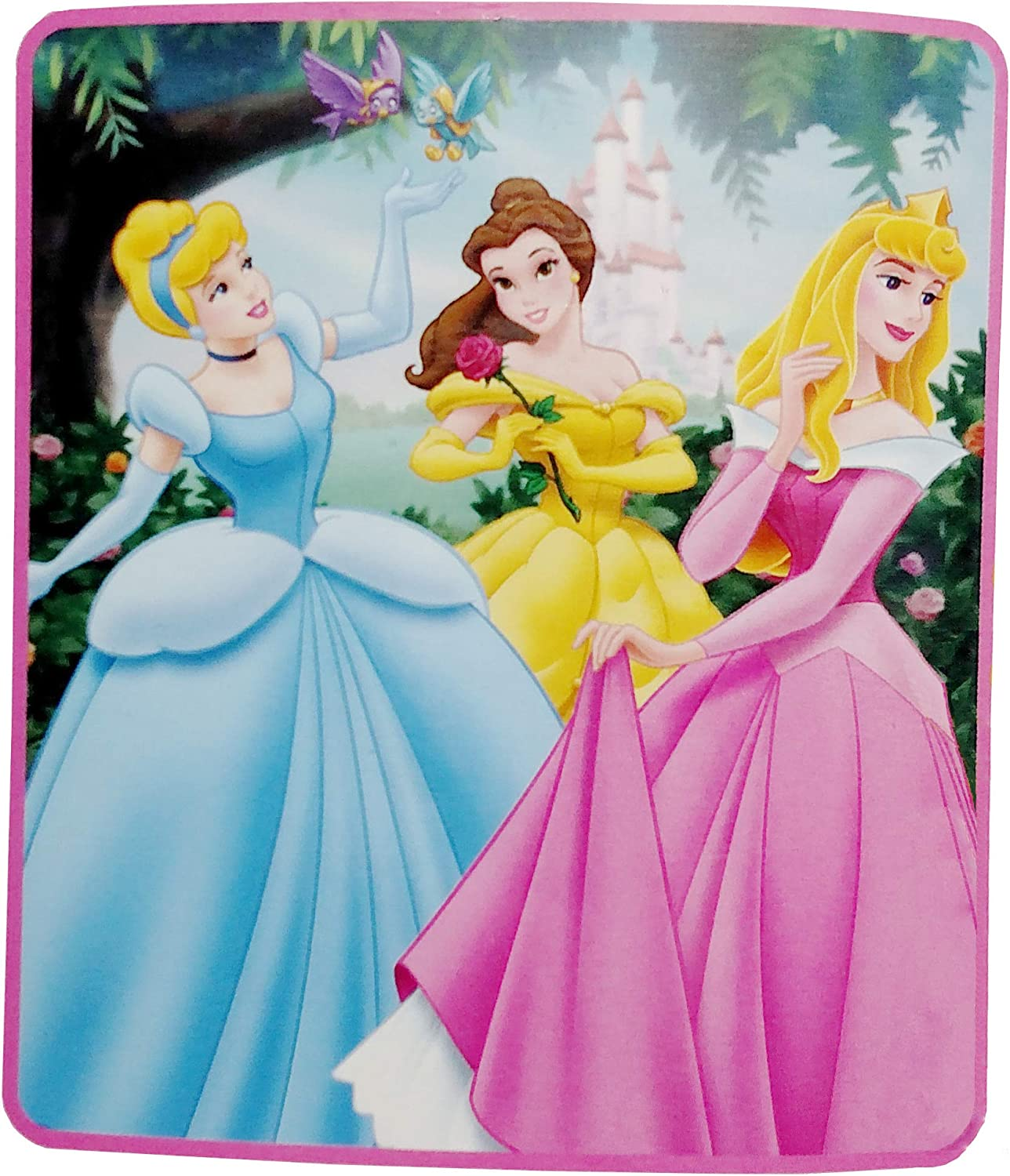 Amazon Com Disney Princess Blanket Automotive