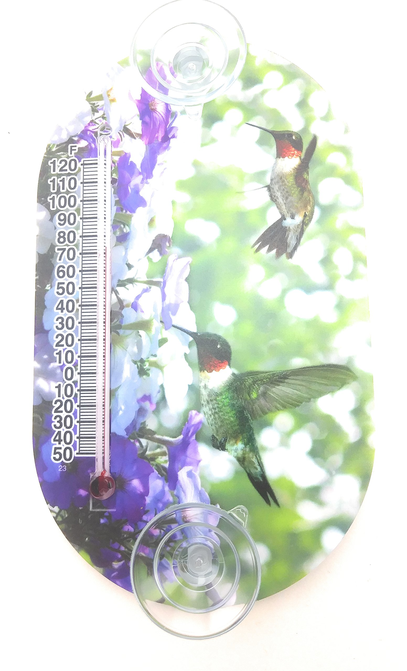 6 inch Oval Suction Cup Window Thermometer (Hummingbird)
