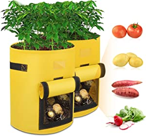 Potato Grow Bags, 2 Pack 10 Gallon Garden Planting Box Premium Breathable Cloth Bags for Potato Tomato & Other Vegetable Container with Handles and Window