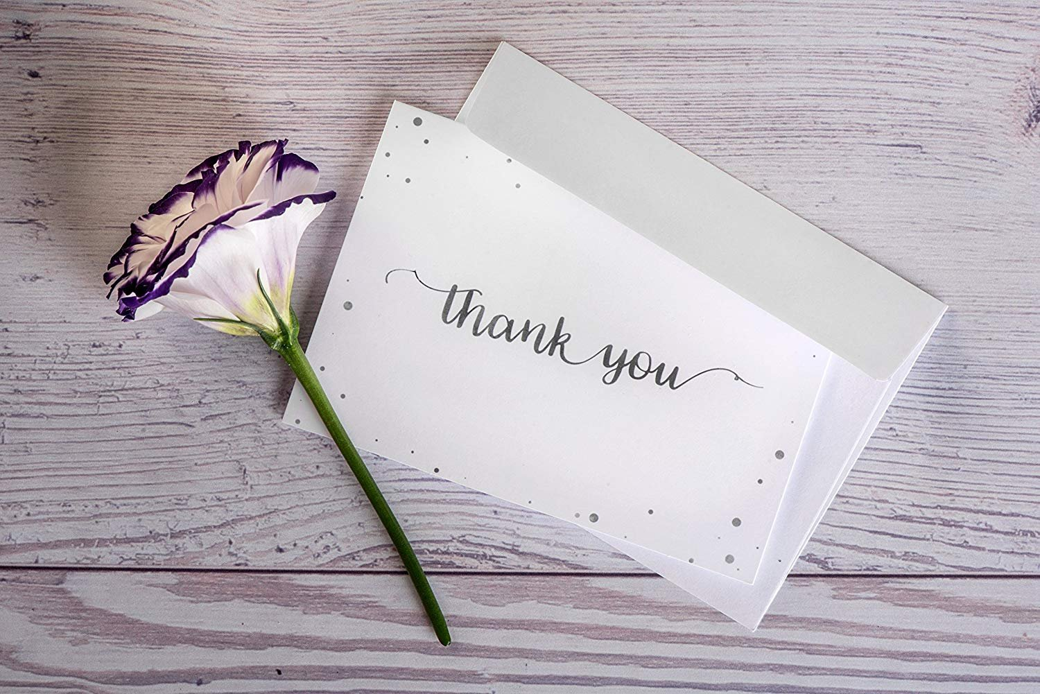 Thank you cards set of 100 2 designs of blank thank you notes and thank you cards set of 100 2 designs of blank thank you notes and self izmirmasajfo