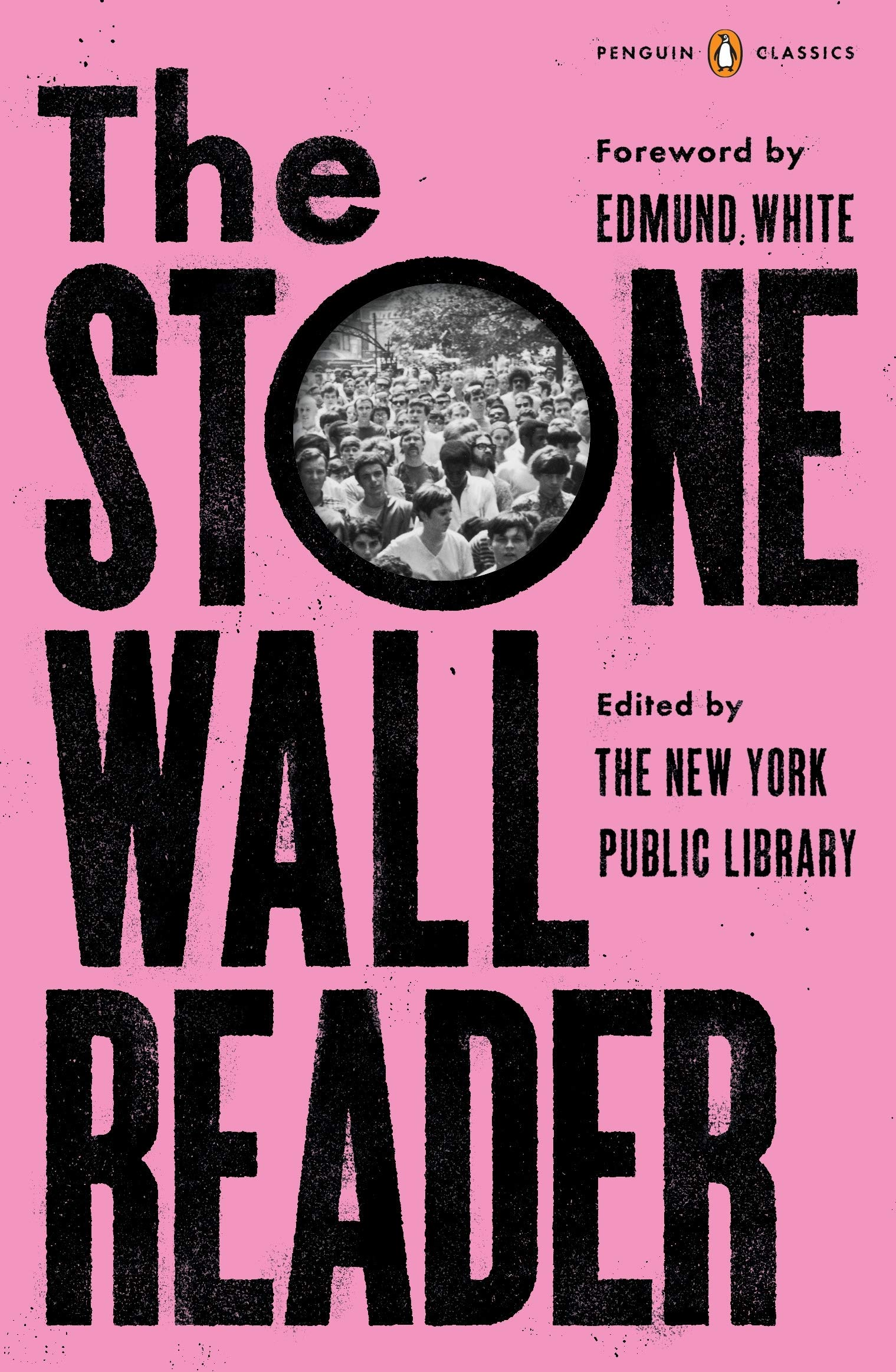 Image result for the stonewall reader baumann
