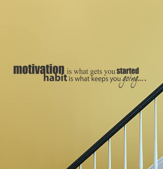 Amazon.com: Motivation is what gets you started habit is what keeps ...