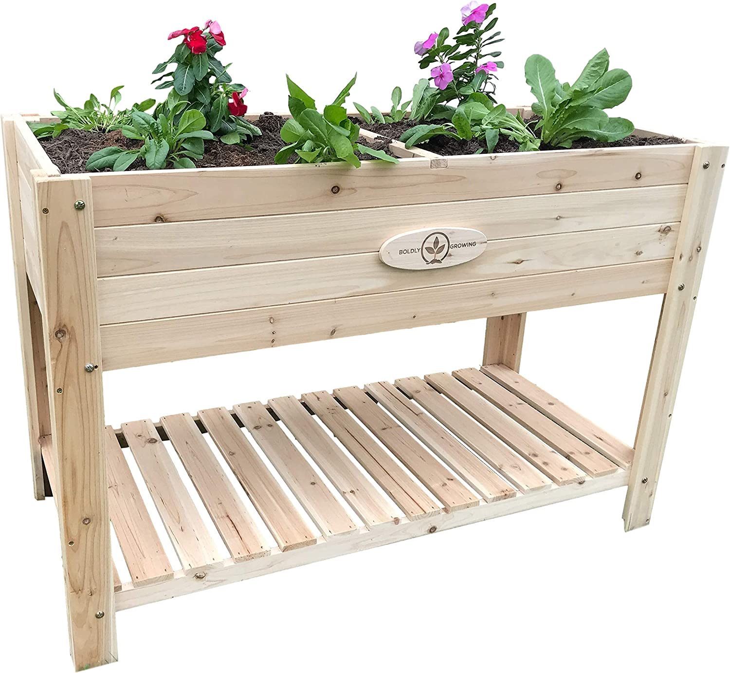 Boldly Growing Cedar Raised Planter Box with Legs – Elevated Wood Raised Garden Bed Kit – Grow Herbs and Vegetables Outdoors – Naturally Rot-Resistant - Unmatched Strength Lasts Years (4x2)
