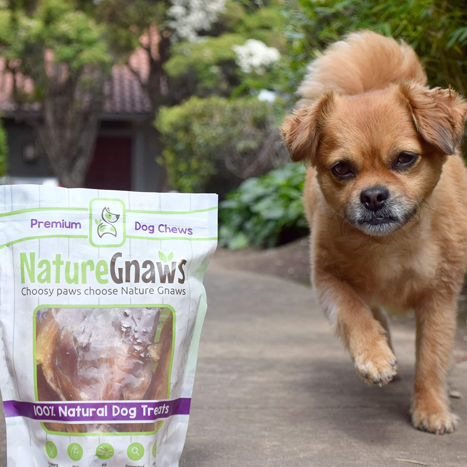 "Nature Gnaws Tendon Chews 4-5"" - 100% Natural Dog Chews - Grass Fed Beef Jerky Tendons for Dogs - Single Ingredient - Rawhide Replacement Chews - Simple Natural Delicious - Packaged in USA"