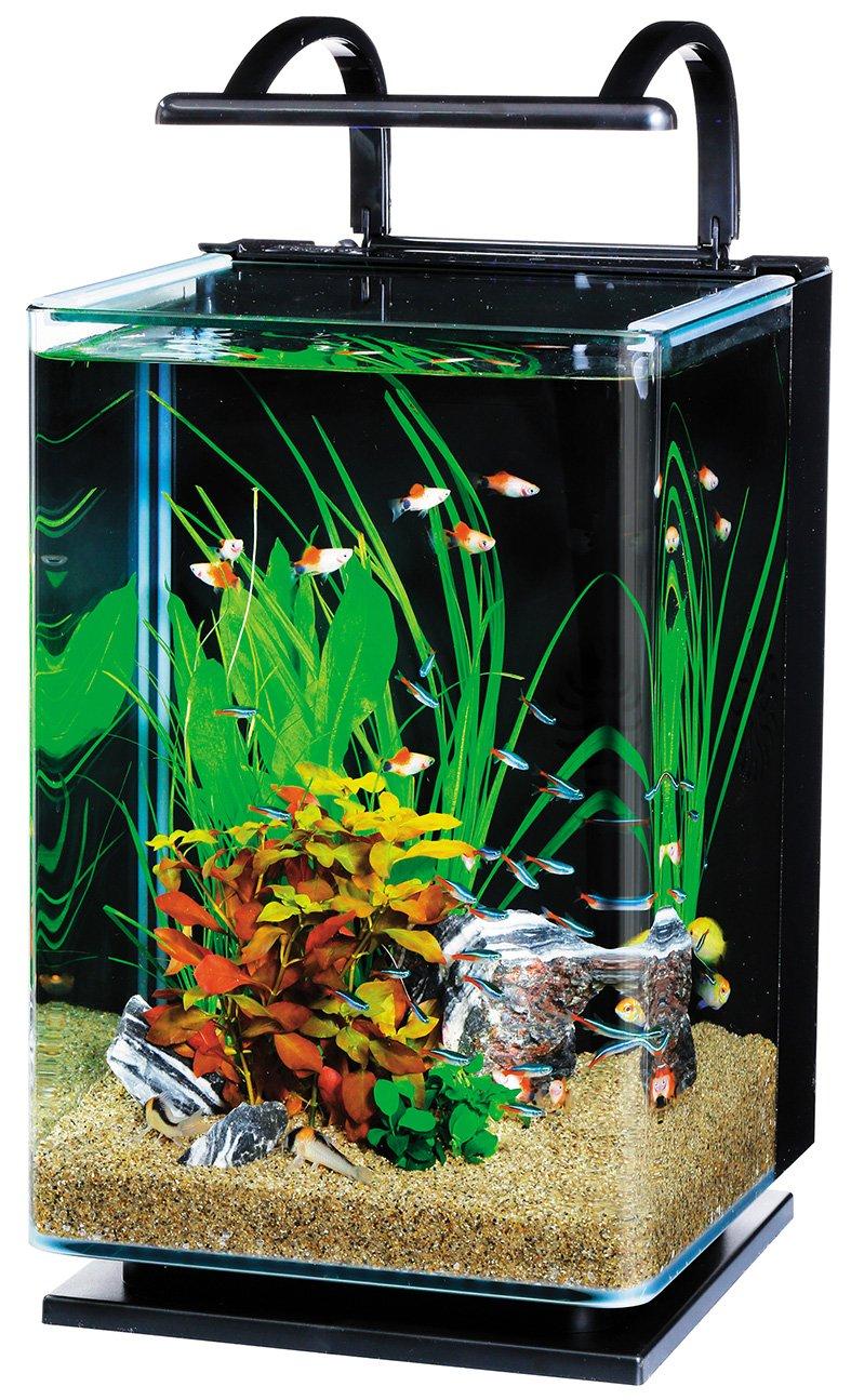 テトラ(Tetra) リビングキューブ オールインワン水槽 幅24.5cm×奥行24.5cm×高さ35.5cm