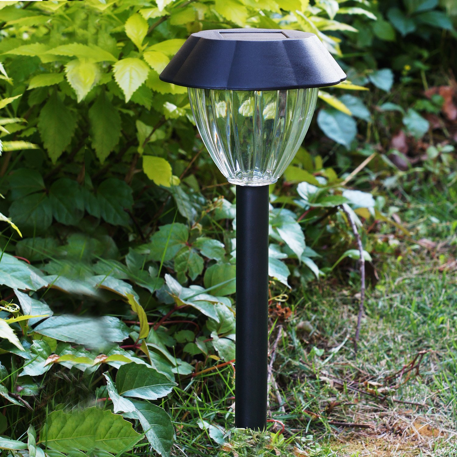 best led solar garden lights reviews fortunerhome. Black Bedroom Furniture Sets. Home Design Ideas