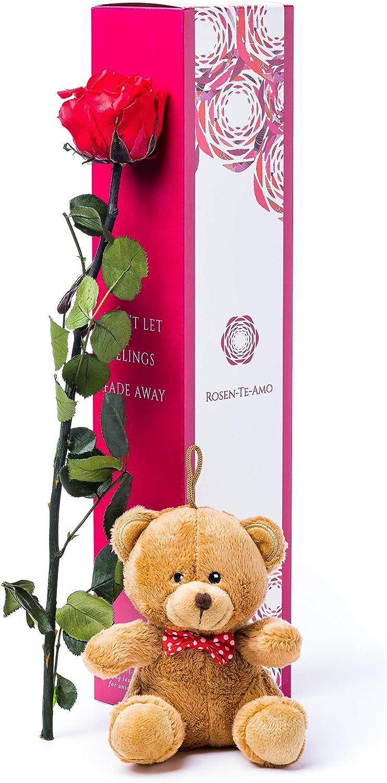 Rosen-Te-Amo, rosa eterna roja con tallo (40 cm), tierno peluche castaño y tarjeta felicitación descargable en caja de regalo refinada. Flores preservadas: san valentin regalos o decoracion hogar