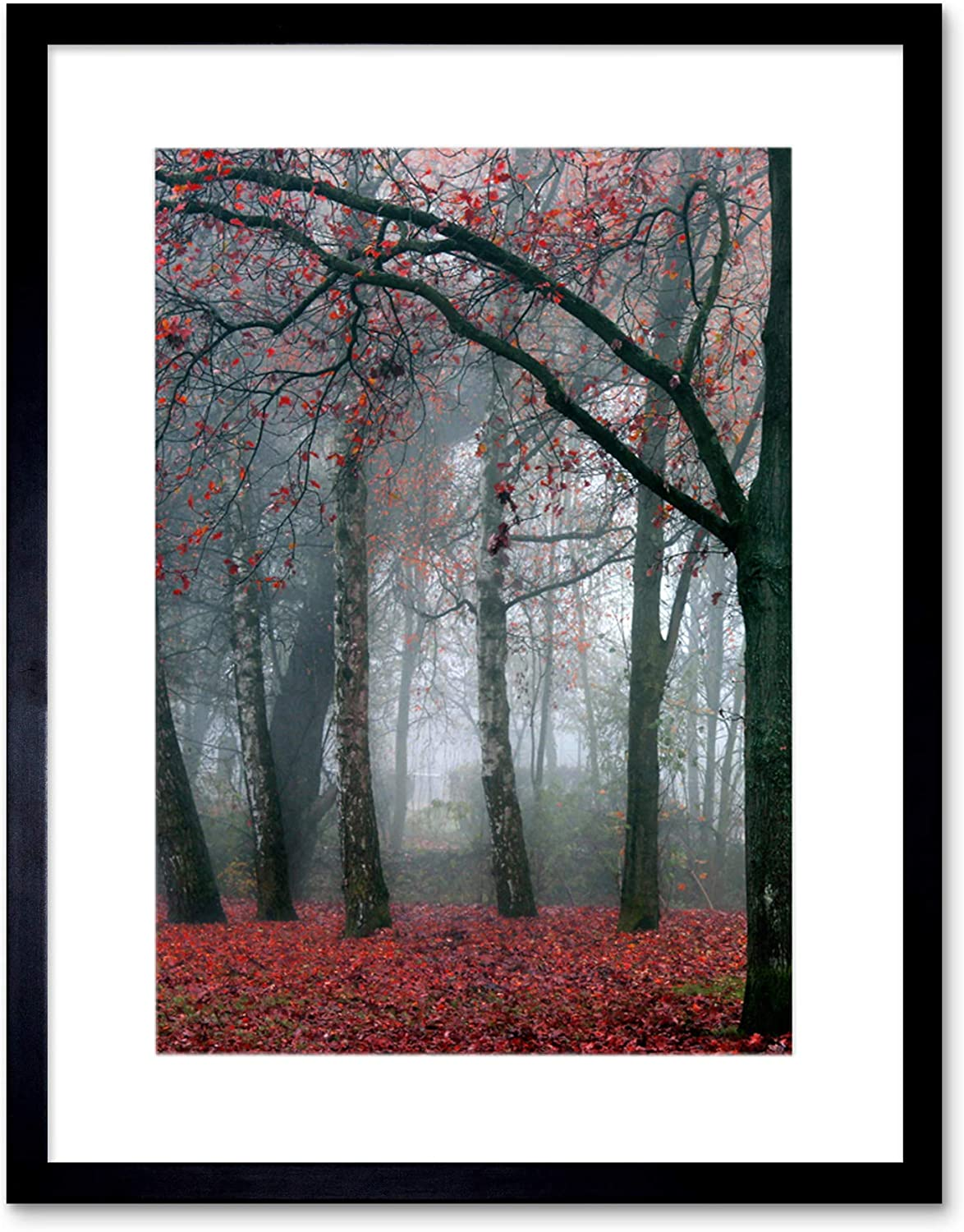 The Art Stop Photo Nature Forest Tree Autumn Fall Beautiful RED Framed Print F12X4210