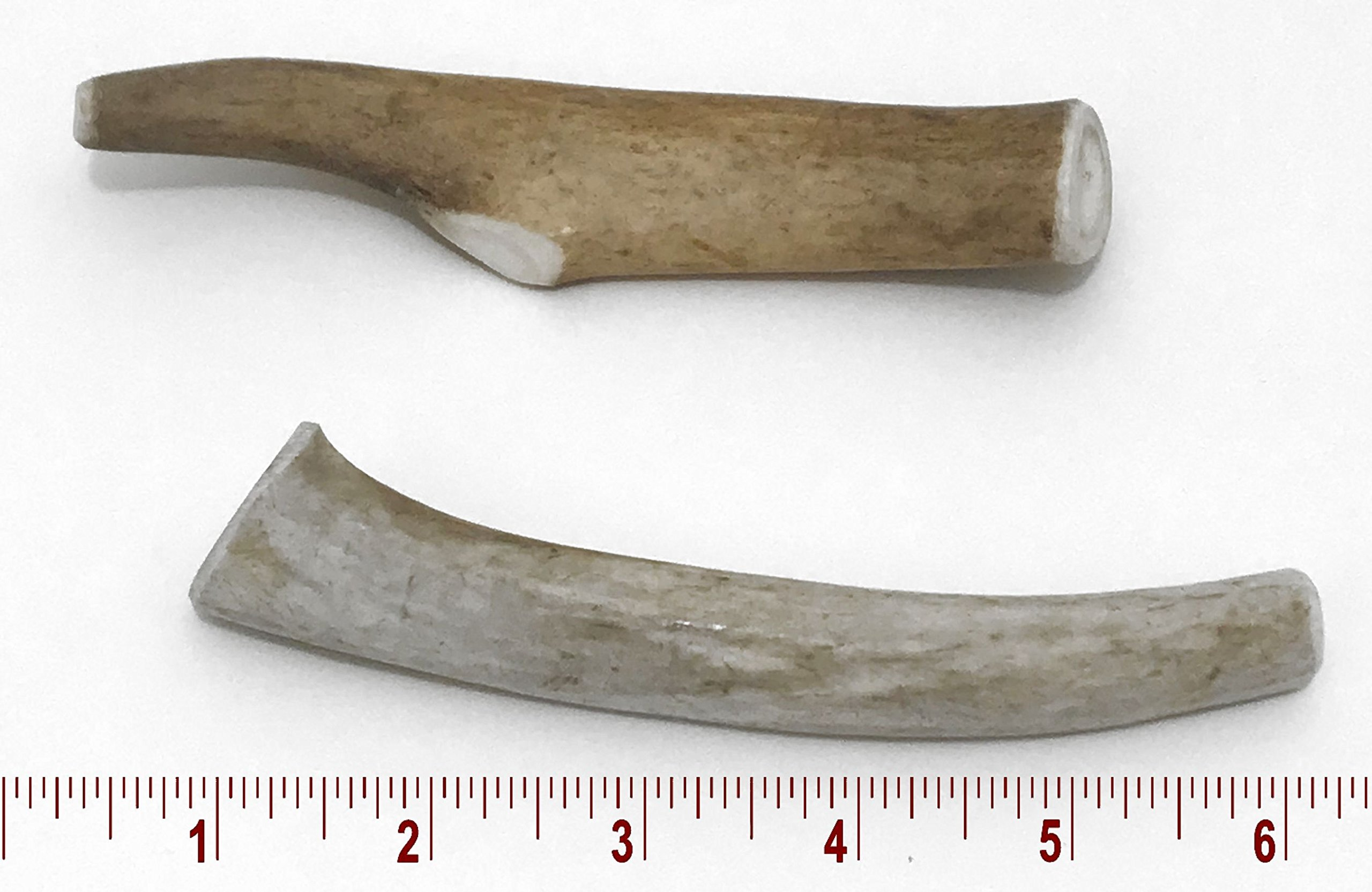 5-7'' Medium Deer Antler Dog Chew - 2 ct by Perfect Pet Chews (Image #1)