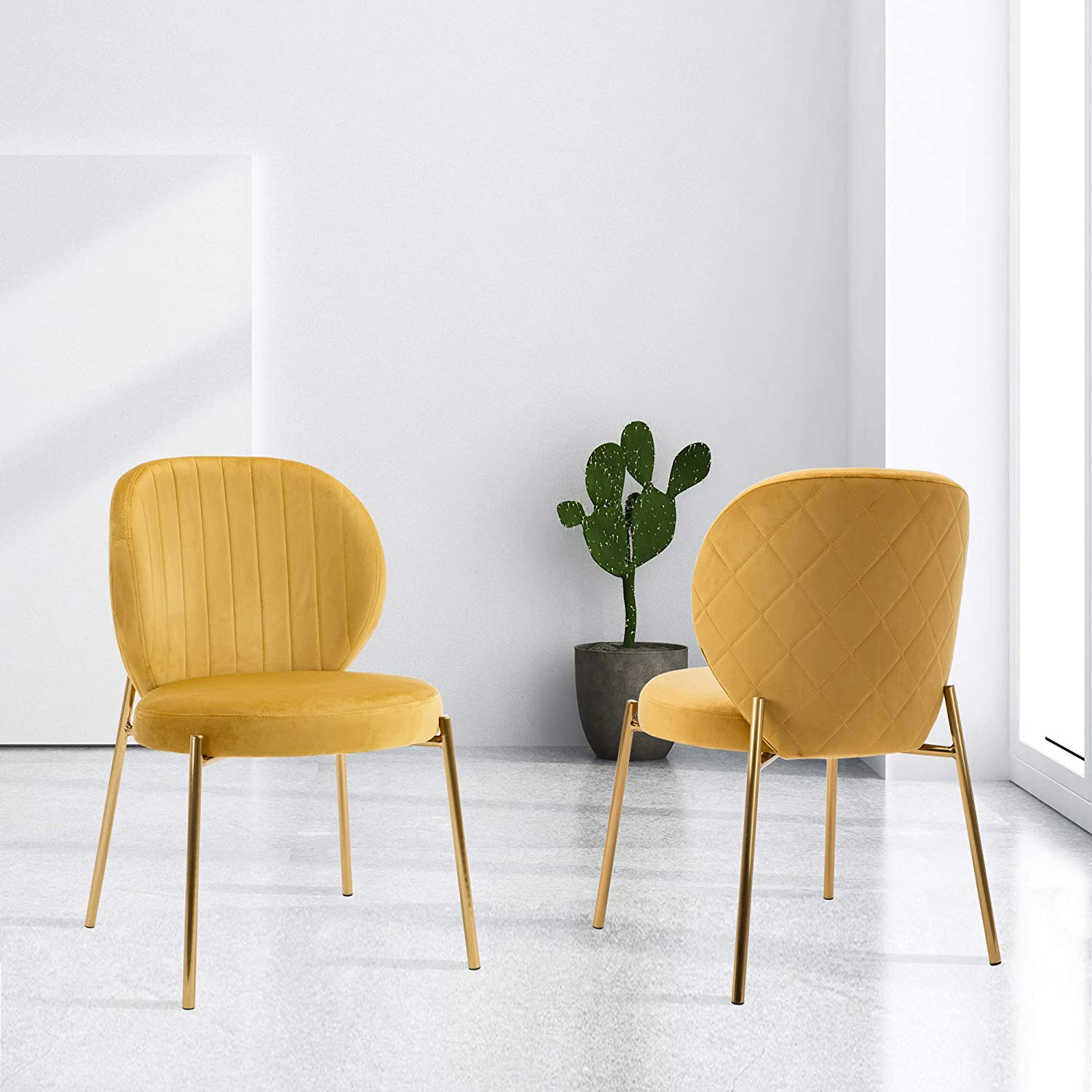 DAGONHIL Velvet Dining Chair,Upholstered Vanity Chairs with Golden Metal  Leg,Set of 6(Yellow)