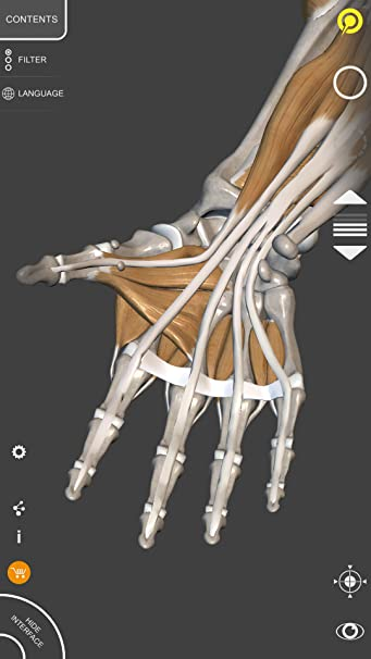 Amazon 3d Anatomy For The Artist Appstore For Android