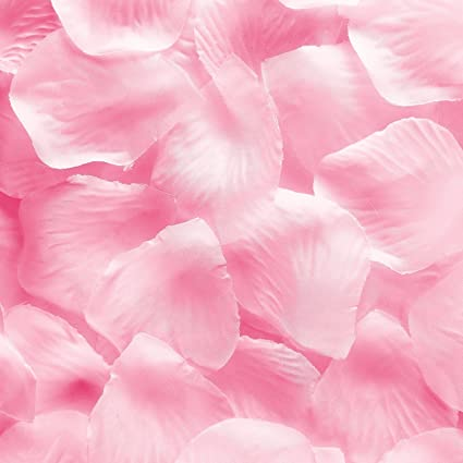 Amazon 1000pcs light pink silk rose flower petals wedding table 1000pcs light pink silk rose flower petals wedding table scaters confetti favor bridal party decoration mightylinksfo