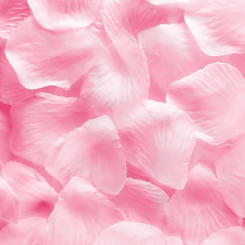 Amazon.com: OurWarm Double Heart Wedding Flower Girl Basket White ...