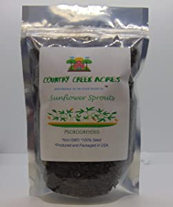 Sunflower Sprouting Seed, Non GMO - 10 Lbs - Country Creek Acre Brand - Sunflower Seed for Sprouts, Garden Planting, Cooking, Soup, Emergency Food Storage, Gardening, Juicing, Cover Crop