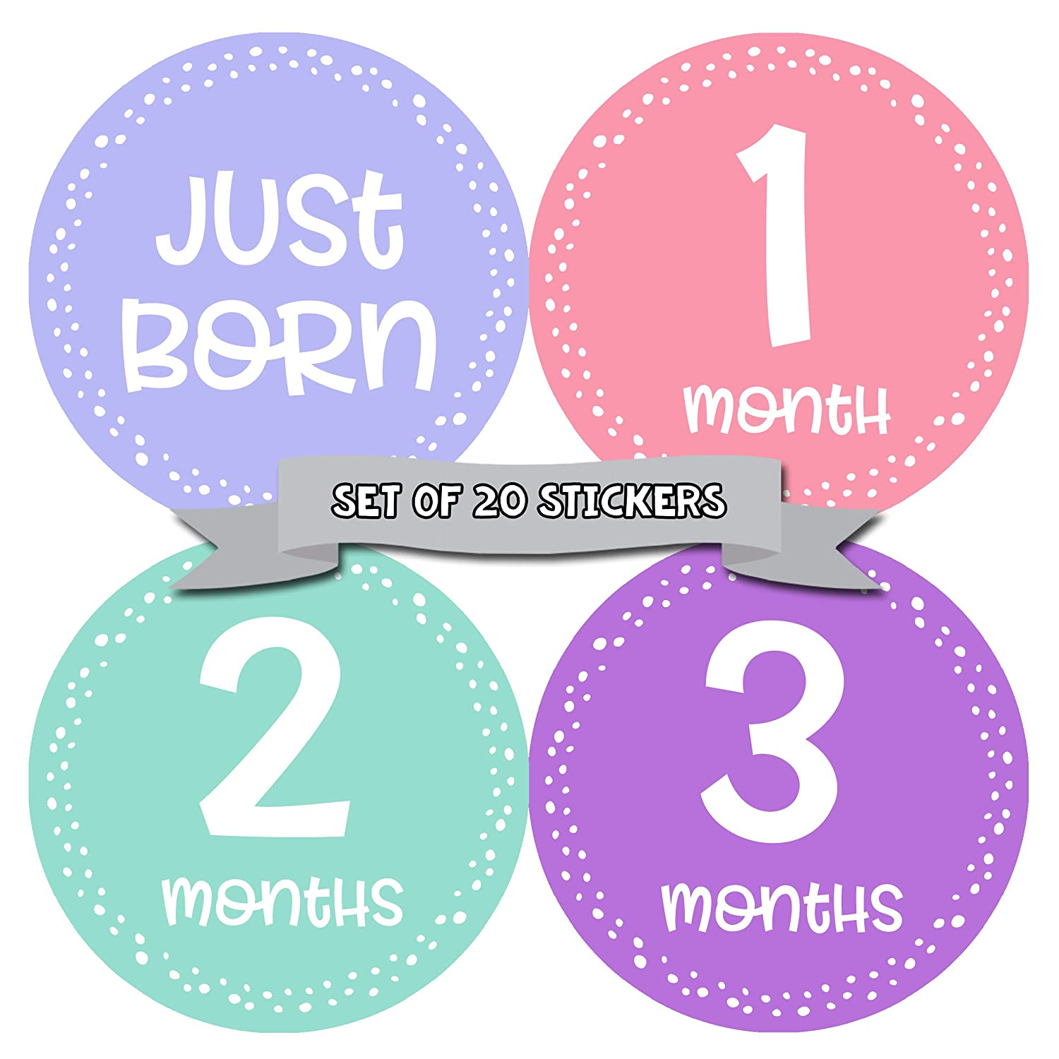 Baby Monthly Milestone Stickers - First Year Set of Baby Girl Month Stickers for Photo Keepsakes - Shower Gift - Set of 20 Months In Motion 1361