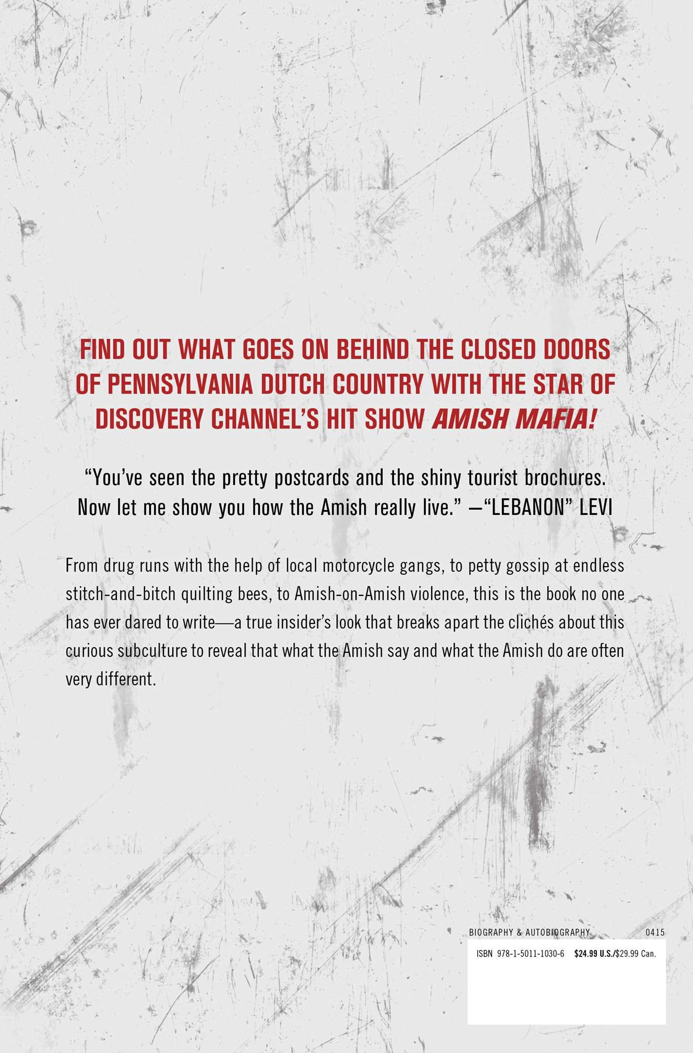 amish confidential levi stoltzfus ellis henican amish confidential levi stoltzfus ellis henican 9781501110306 books ca