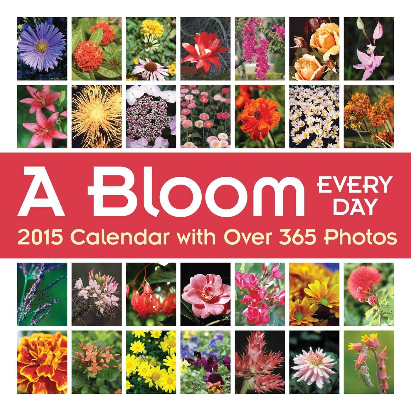 A Bloom Every Day 2015 Wall Calendar  With Over 365 Photos