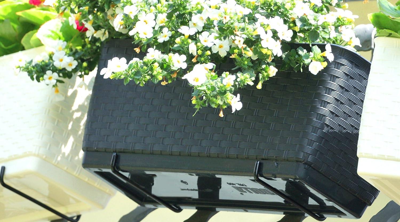 500 Anthrazit Blumenkasten Balkonkasten Blumentopf Rattan Optik Ratolla mit Halterungen Untersetzer 2 Gr/ö/ßen 4 Farben von rg-vertrieb