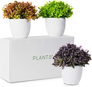 Plants+ Artificial Fake Faux Indoor House Desk Office for Decoration - Fresh Green Lavender Orange Plastic Lifelike Flower with White Pot, Outdoor Decor Topiary Greenery - Set of 3